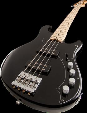 bass-main